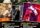 Konzerte live mit Publikum geht nicht? Geht doch! HAMBURG MUSIC WEEK: 28.-31.10